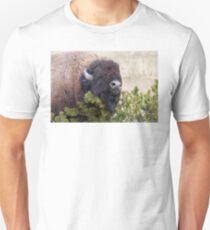 Bull Bison T-Shirt