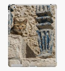 Cat on ancient stairs iPad Case/Skin