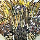 Cactus Crown by Susan  Detroy