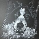 Cody the Collie by Ally Tate