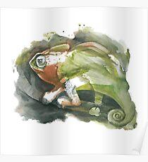 Chameleon, watercolor Poster