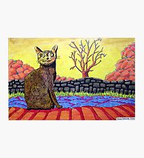 423 - YELLOW CAT - DAVE EDWARDS - COLOURED PENCILS - 2016 Photographic Print