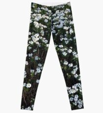 my garden: aesthetic flora Leggings