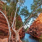 Peaceful Gorge- Karijini | Pilbara| WA by oddoutlet