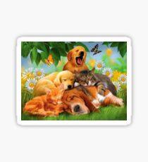 Pet Pyramid Sticker
