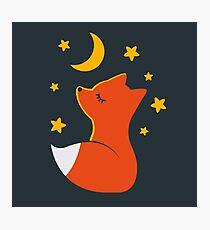 Cute little fox Photographic Print