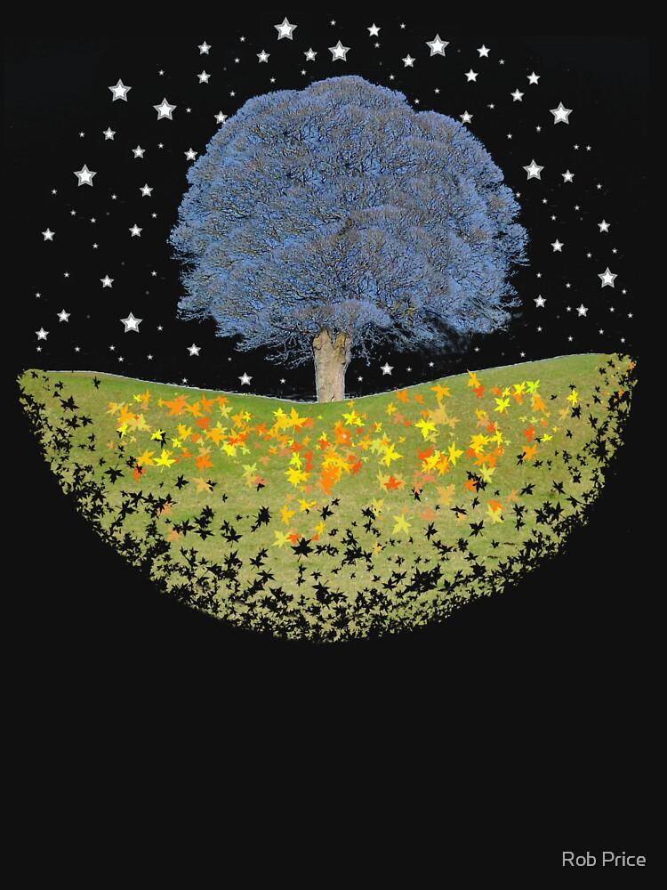Sternenhimmel von wanungara