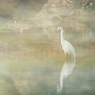 Reflecting Egret by Sarah Vernon