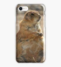 Groundhog Day iPhone Case/Skin