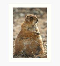 Groundhog Day Art Print