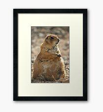 Groundhog Day Framed Print