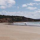 Natural Cove & Cliffs, Point Roadknight, Anglesea, Victoria.  by Rita Blom