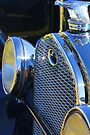 Vintage Grille by AuntDot