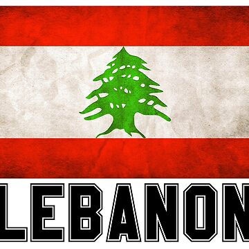 Lebanese Pride T Shirt by freestyleINK