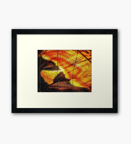 Hot Wing Framed Print