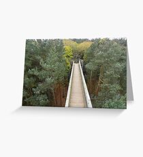 Salcey Forest in UK Greeting Card