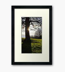 Afternoon landscape Framed Print