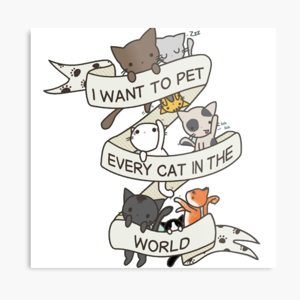 I want to pet every cat in the world! Metal Print