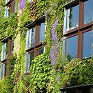 Vertical garden by bubblehex08
