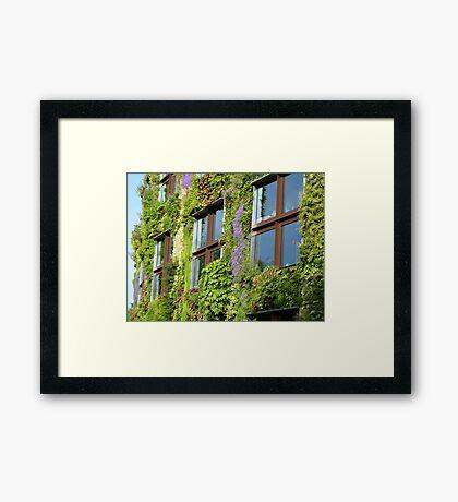 Vertical garden Framed Print