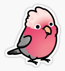 Rose-Breasted Galah Cockatoo Sticker