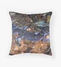 Underwoodisaurus milii (Thick-tailed Gecko; Barking Gecko) Throw Pillow