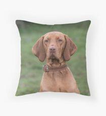Portrait of a Hungarian Vizla dog Throw Pillow