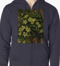 Primrose, Drumlamph Wood, County Derry Zipped Hoodie