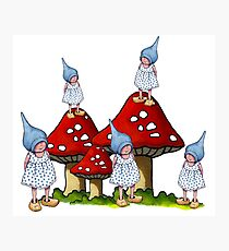 Fantasy Art: Little Gnome Girls and Toadstools Photographic Print