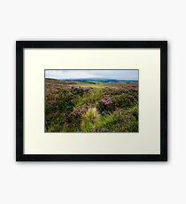 Grouse Moor Perthshire Scotland UK Framed Print