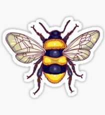 honey guards Sticker