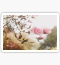 Magnolia Through A Drowned Lens Sticker