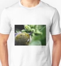 Silver Eye T-Shirt