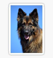 German shepherd head portrait Sticker