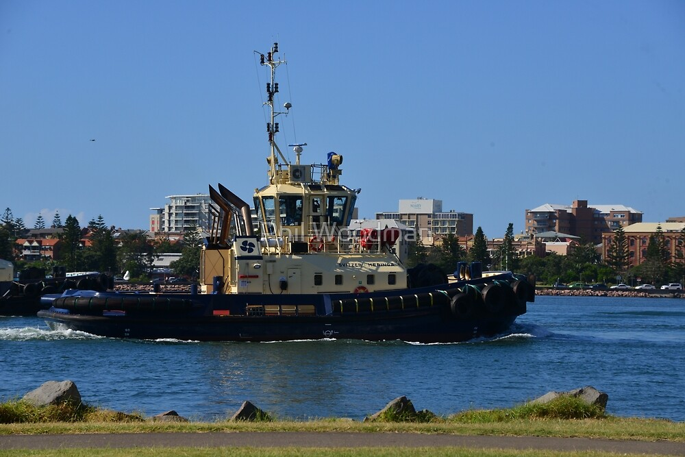 SVITZER TUG MERINGA - NEWCASTLE HARBOUR. by Phil Woodman