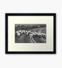 Traffic Jam - Donegal Style Framed Print