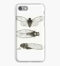 3 sepia Cicadas iPhone Case/Skin