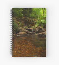 Forest river Spiral Notebook