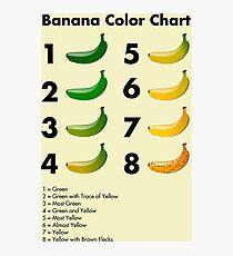 Banana color chart Photographic Print