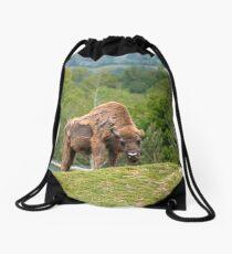 fdb1176d7811 European Bison in fota wildlife park Drawstring Bag
