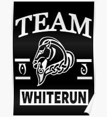 Team Whiterun Poster
