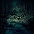 The Lonely Road by Julie Conway