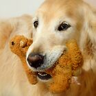 """""""My favorite stuffy.."""" by Laurie Minor"""