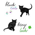 Black Cats Bring Luck by Perrin Le Feuvre