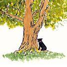 Blossom at the Agnes Tree by Dan Vera by danvera