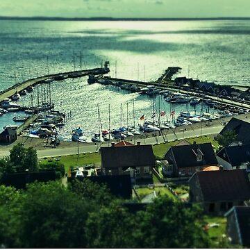 Sweidsh Harbour by DanerenKrille