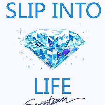Seventeen Slip into the Diamond Life by wonnie