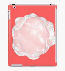 Smooth iPad Case/Skin