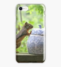 Squirrel and Cookie Jar iPhone Case/Skin