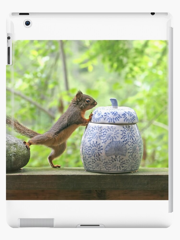 Squirrel and Cookie Jar by Peggy Collins